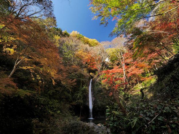 秩父華厳の滝1