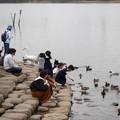Photos: 水鳥とのふれあい