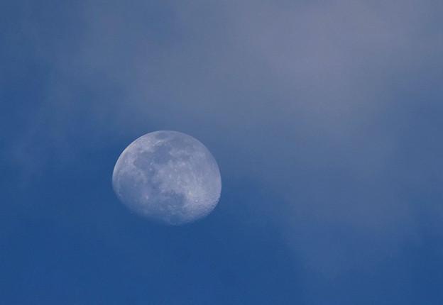 日没時のお月様