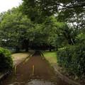 Photos: 歩道が川に(^^;;