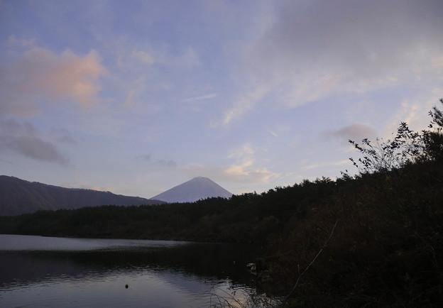 西湖、富士