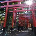 Photos: 東伏見稲荷