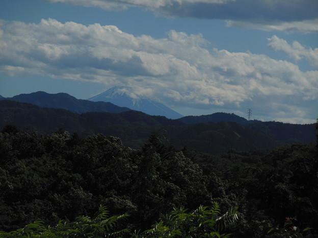 霊峰富士は今日も綺麗です