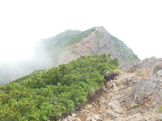 夏登山 赤岳7 山頂へ