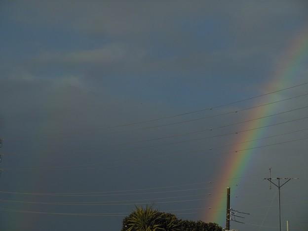 よく見えない二重虹