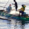 マニラ湾の漁師