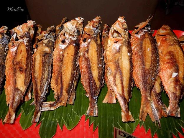 「魚油飲んで効能よりも副作用」 備忘録 ダラガンブキッド・タカサゴ
