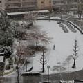 Photos: 初雪3月29日