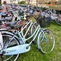 撤去・廃棄自転車