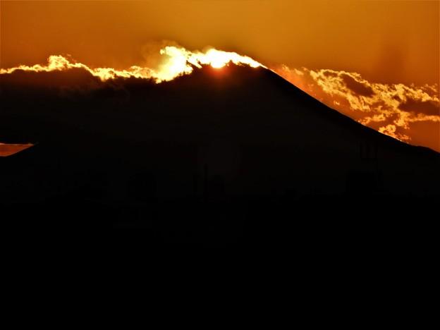 オパール富士 「つい言った恒久停止こちらから」