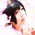 Photos: 恋桜