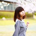 写真: 今年も桜