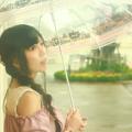 Photos: 雨が好き