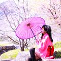 Photos: 花と団子