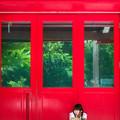 Photos: 異邦人