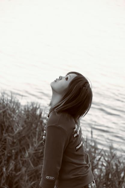 Photos: 夕凪