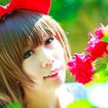 赤いリボンと赤いバラ