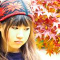 Photos: 楓
