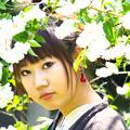 Photos: 六月の花飾り