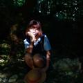 Photos: 木洩れ日
