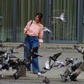 Photos: 鳩は平和の象徴と云われるが…*b