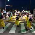 写真: わくわく踊りの蝶の舞