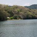 Photos: 湖畔に咲く桜