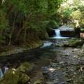 Photos: へび滝を望む