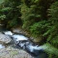 Photos: へび滝を見下ろす…