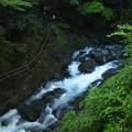 写真: 河津七滝の流れ