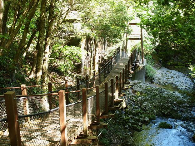 写真: 遊歩橋