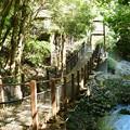 Photos: 遊歩橋