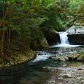Photos: へび滝の流れと水辺と