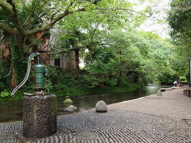 Photos: 手押し井戸ポンプの有る情景