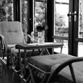 Photos: 夏の日の窓辺