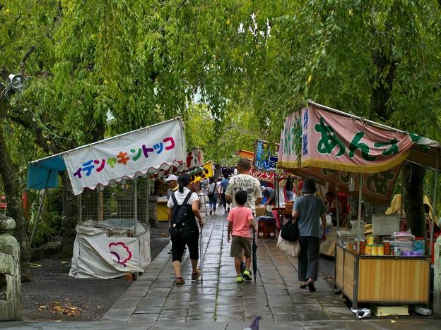 写真: 小雨降る参道