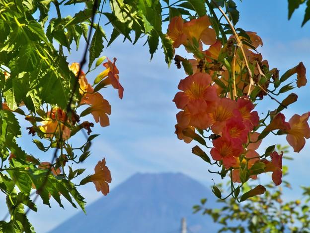 Photos: 垣間見る富士のお山