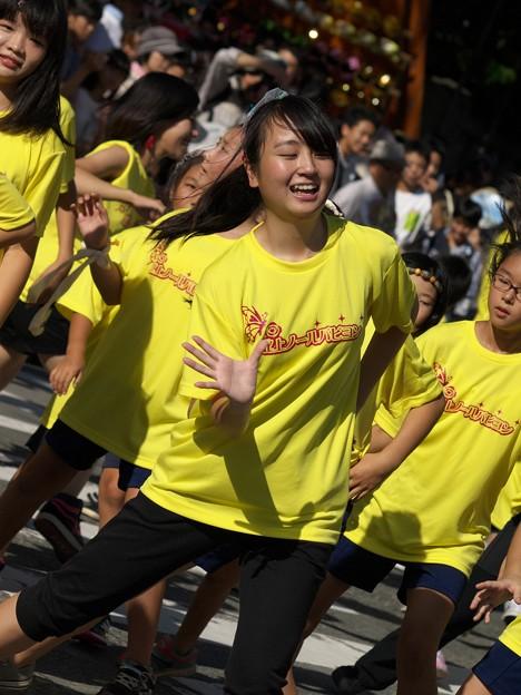 三島サンバ~若き踊り子たち