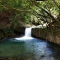 河津七滝~へび滝