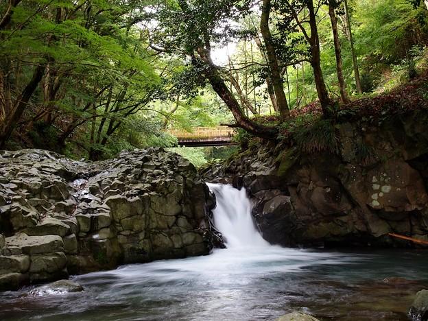 河津七滝~へび滝を望む