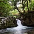 Photos: 河津七滝~へび滝を望む