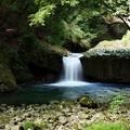 河津七滝~へび滝・正面視