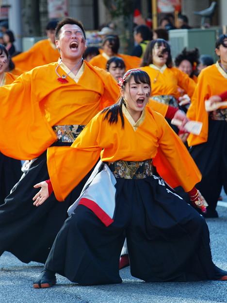 よさこい東海道 2018 前日祭 -i