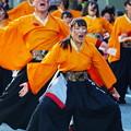 Photos: よさこい東海道 2018 前日祭 -i