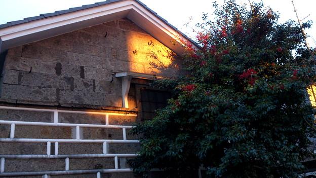 夕陽あたる壁
