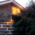 Photos: 夕陽あたる壁