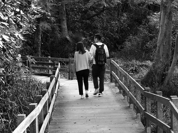 ふたりの散歩道