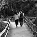 Photos: ふたりの散歩道