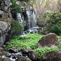 Photos: 小さな小さな滝