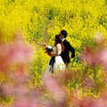 Photos: 菜の花畑は幸せいっぱい♪